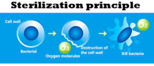 Disinfection & Ozonation