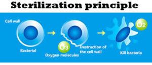 Disinfection & Ozonation