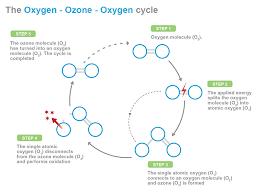 Effect on Organics