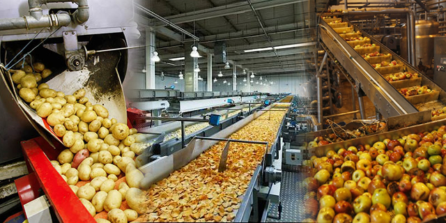 Food Processing Echip Ozonators High Power Best Ozone